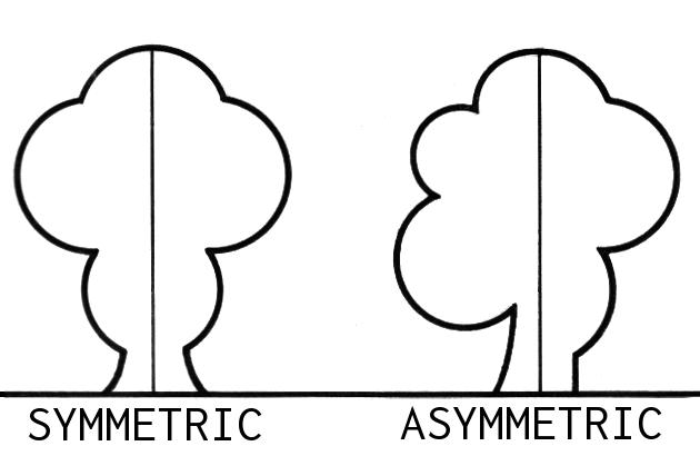 Тренды в Дизайне Логотипов Asymmetric