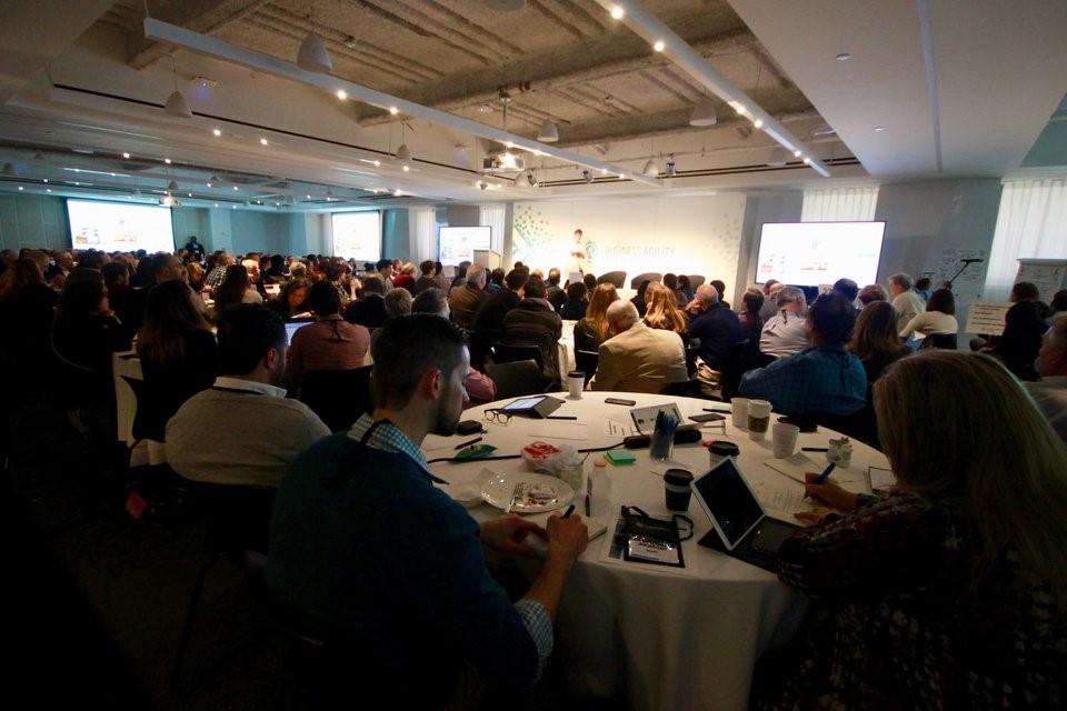 Agile конференции Business Agility