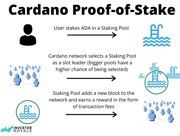 App or Website Development with Cardano Solutions