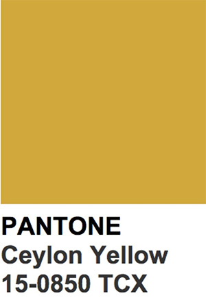 Pantone Color Trends 2019: Ceylon Yellow