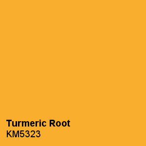 Pantone Color Trends 2019: Turmeric