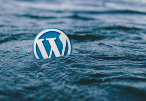 Top 7 WordPress Plugins That Are Important for Professional WordPress Websites