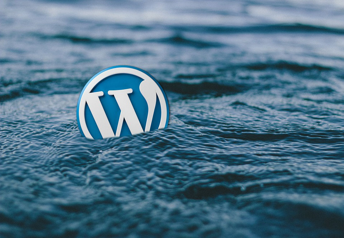 Featured image for Top 7 WordPress Plugins That Are Important for Professional WordPress Websites