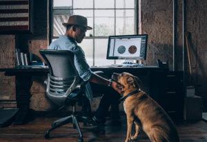 Efficient Tips to Improve Your Website's Graphic Design