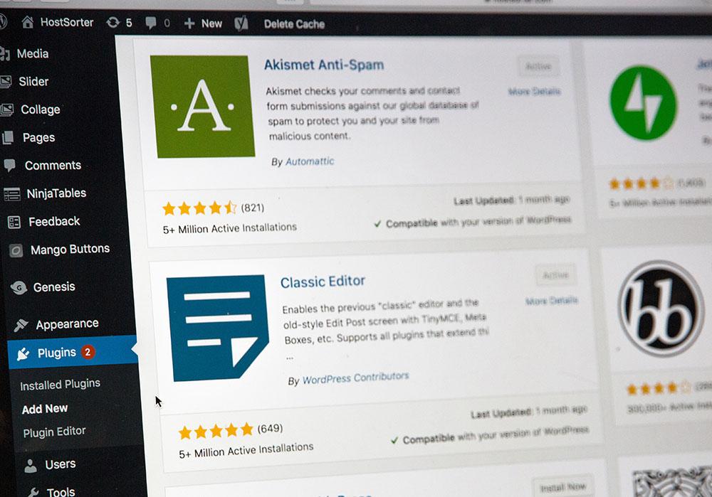 WordPress Plugins for Professional WordPress Websites