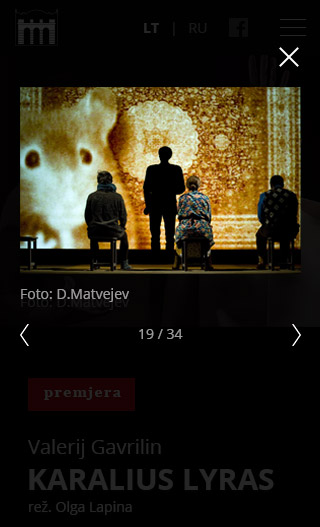 Mobile artwork for Website for theatre - Theatre - Web-development - Merehead Development